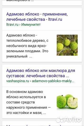 Как правильно сделать настой из адамова яблока