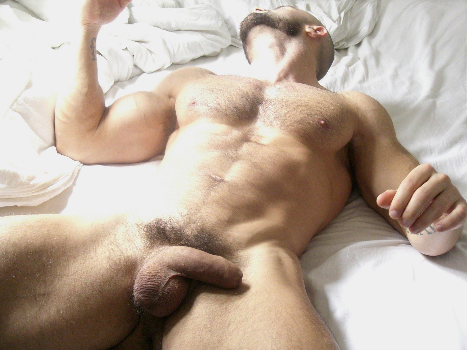 Гей Порно Члены Спящих