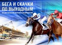Бега и скачки на Центральном Московском ипподроме