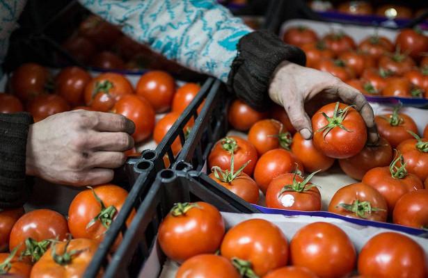 Россельхознадзор частично снял запрет наввоз томатов изКазахстана