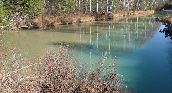 Экологи «Живого Шемура» взяли пробы сзагрязненных УГМК рек