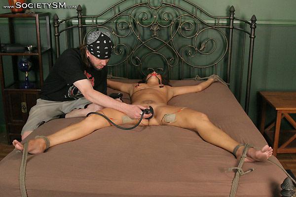 Free image porn star
