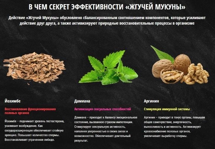 Семена мукуна жгучая похудения