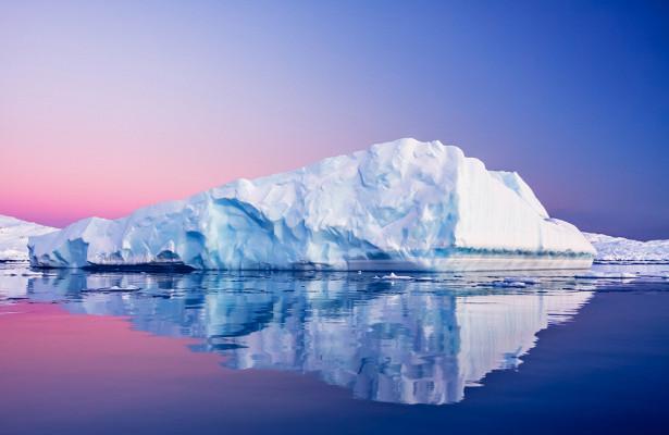 Подо льдом Антарктиды нашли ранее неизвестные живые организмы