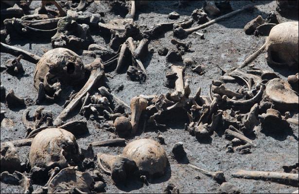Древнее поле бояможет оказаться местом «жестокой бойни»