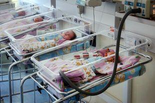 Калининградцев научат ухаживать занедоношенными детьми