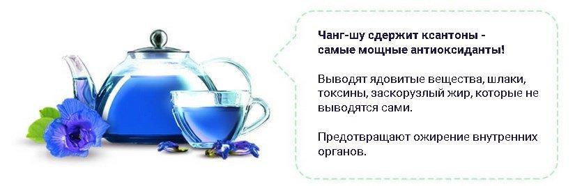 Чанг шу купить в орске пурпурный чай чанг-шу