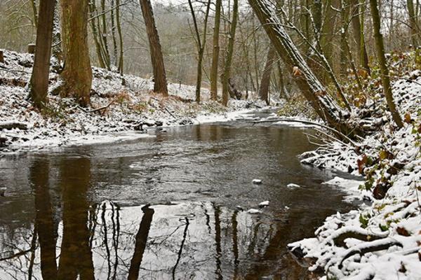 ВВолгоградской области «покраснела» река