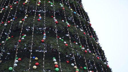 ВКрасноярске кновому году впервые установят елку направобережной набережной