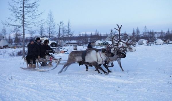 «Туризм вАрктике есть, ноегонадо отшлифовать»