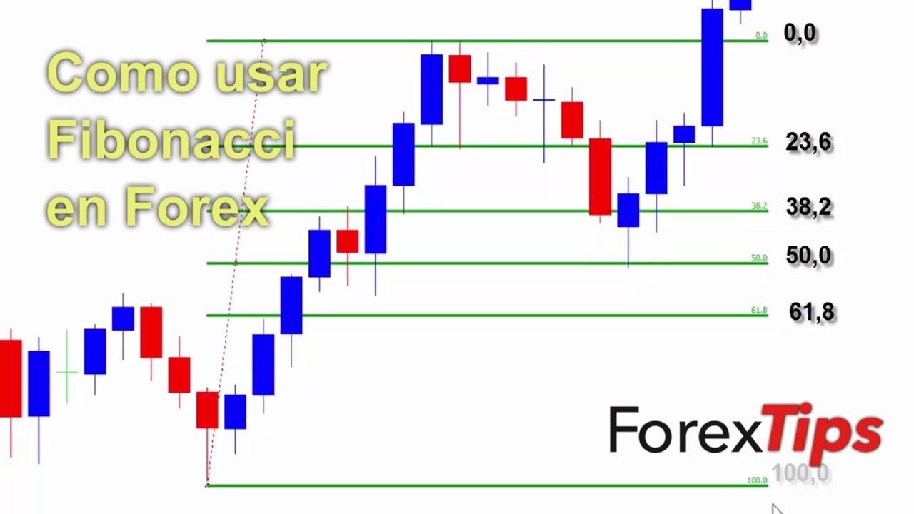 Die best forex traders