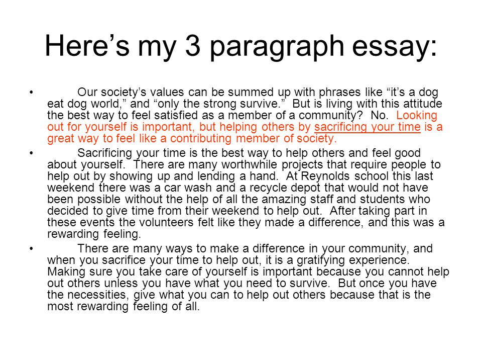 Three paragraph essay samples