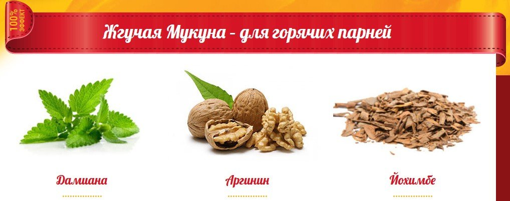 Купить Жгучая Мукуна в Невинномысске
