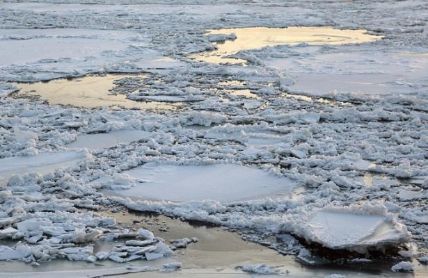 Вомском Иртыше обнаружили повышенное содержание ртути