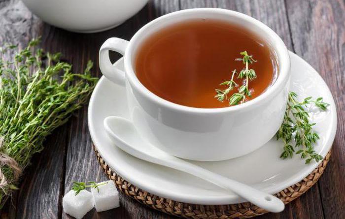 Чай чабрец от алкоголизма