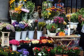 Несанкционированную продажу цветов встолице помогут выявлять активисты