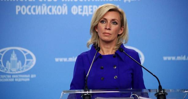 Захарова раскритиковала планы создания «Великой Албании»