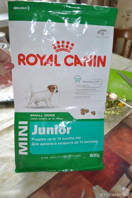 Корм royal canin professional mini junior