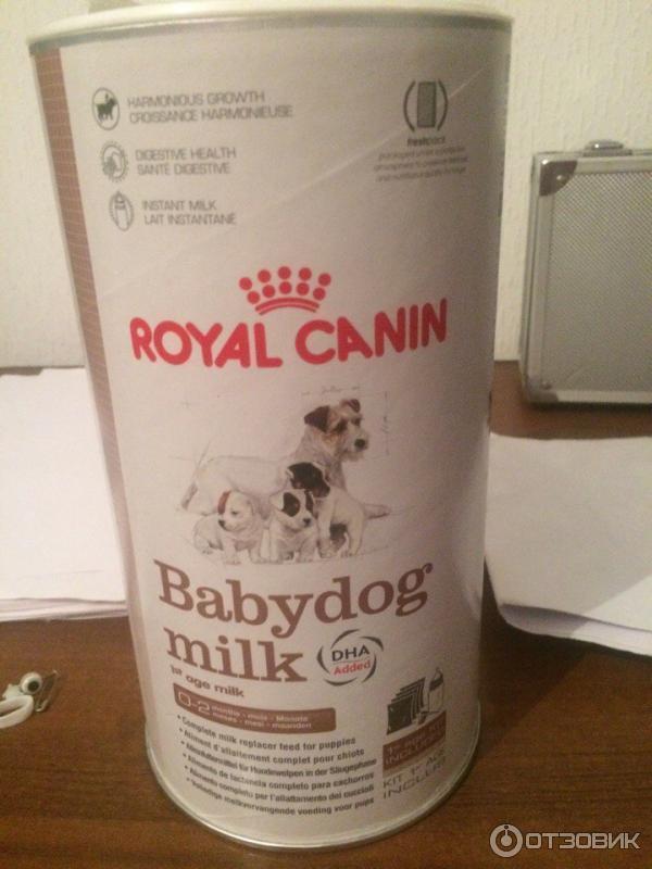 Корм royal canin заменитель сучьего молока