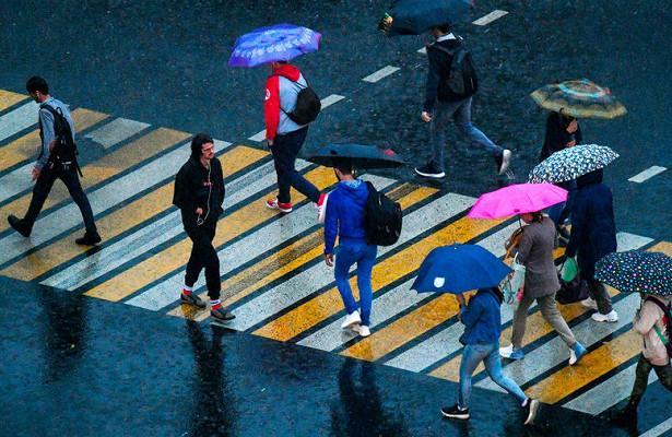 Спасти пешеходов: водителей ждет ограничение