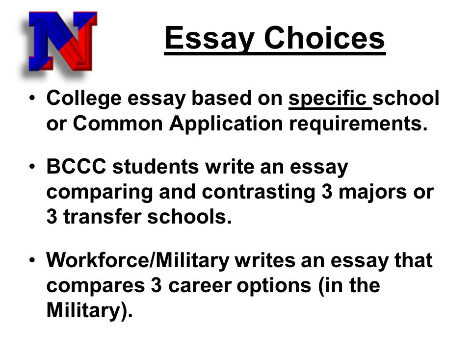 Write my sample college application essays for transfer students
