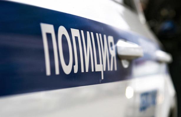 ВМоскве полицейские выдали владельцу автомобиль струпом