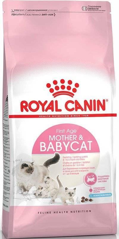 Корм royal canin mother babycat 10 кг