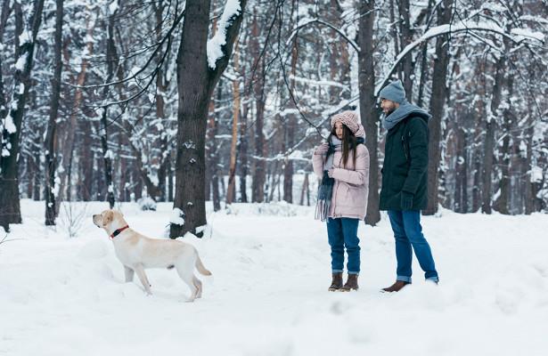 Какнезаболеть вовремя прогулки зимой