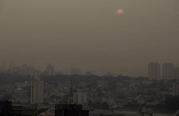 Учёные опровергли мифоб«экологическом чуде» вовремя пандемии