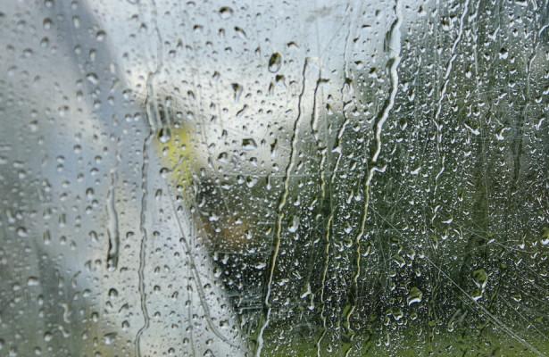Погода вСНГ: вКыргызстане морозы унесли восемь жизней, наБеларусь надвигаются дожди