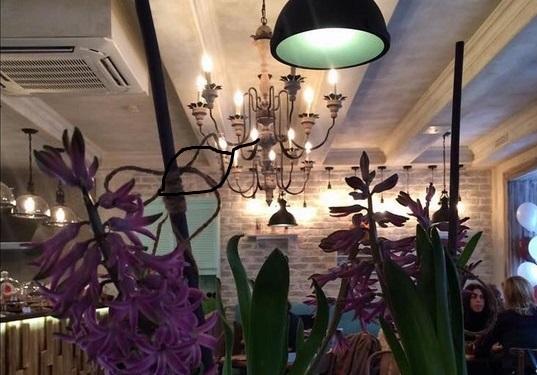 Ресторан Пряный ветер - фотография 1 -