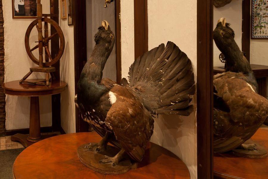 Ресторан Лиса и фазан - фотография 11