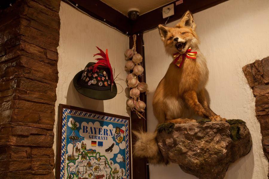 Ресторан Лиса и фазан - фотография 10