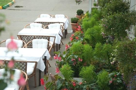Ресторан Маэстро - фотография 9