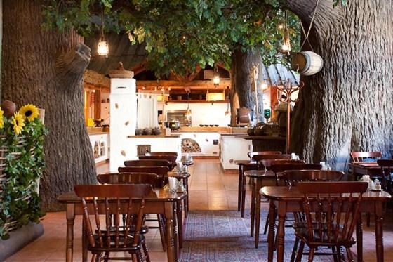 Ресторан Елки-палки - фотография 5