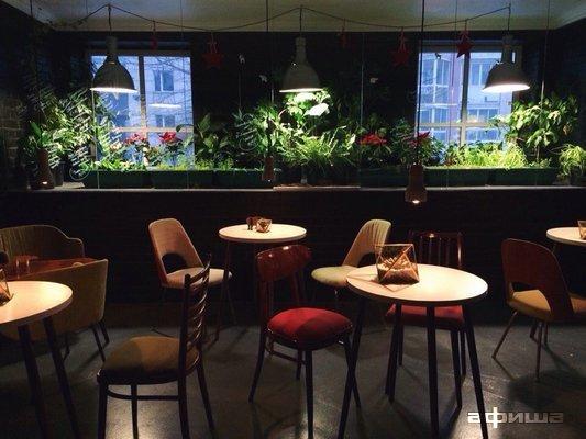 Ресторан Mishka. Food - фотография 3