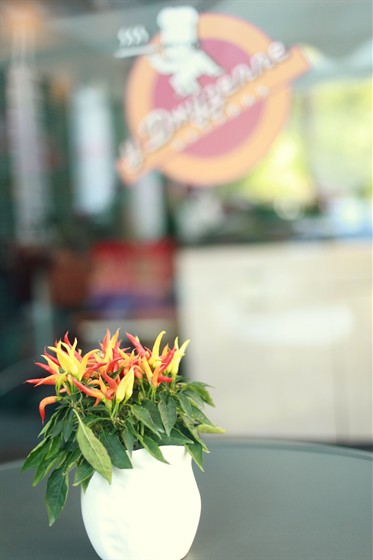 Ресторан У Сальваторе - фотография 24