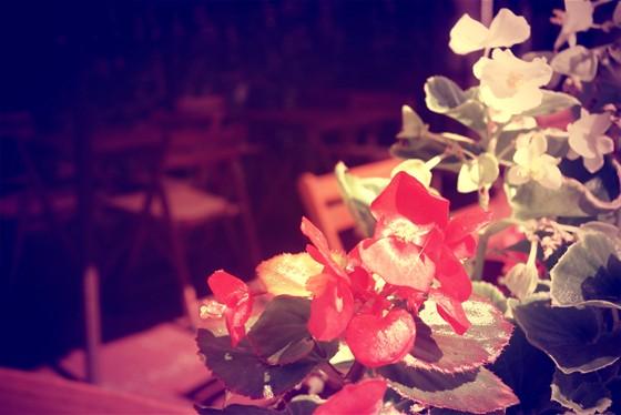 Ресторан Дружкова кружка - фотография 11