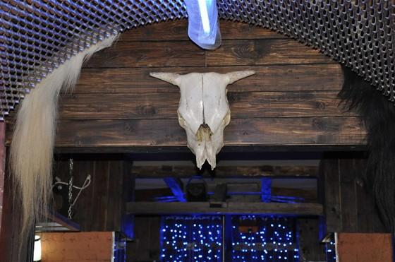 Ресторан Кактус Джек - фотография 4