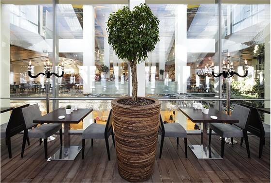 Ресторан Вермишель - фотография 4