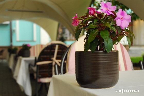 Ресторан Vicolo - фотография 4