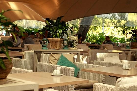 Ресторан Черноморская ривьера - фотография 2
