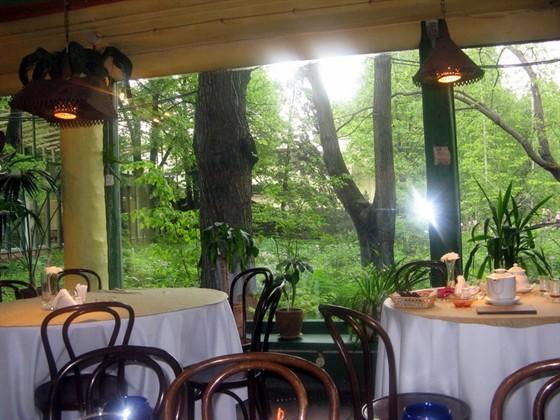 Ресторан Мадам Галифе - фотография 10