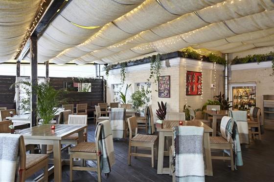 Ресторан Дайкон - фотография 11