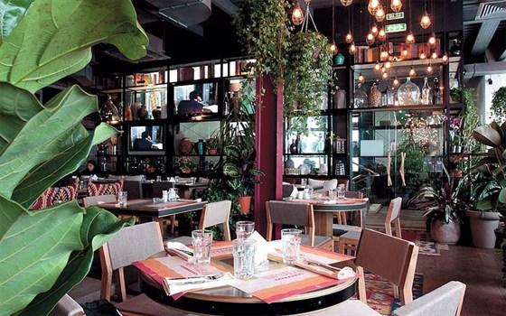 Ресторан Чурчхела - фотография 6