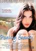 Ускользающая красота (Stealing Beauty)