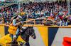 Рыцарский турнир святого Георгия-2016