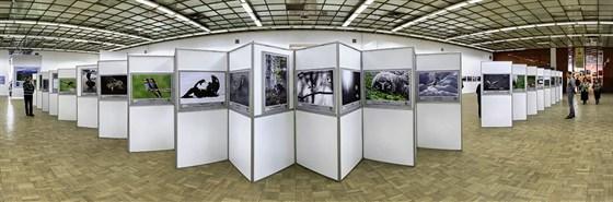 Фото выставочный зал ЦДХ