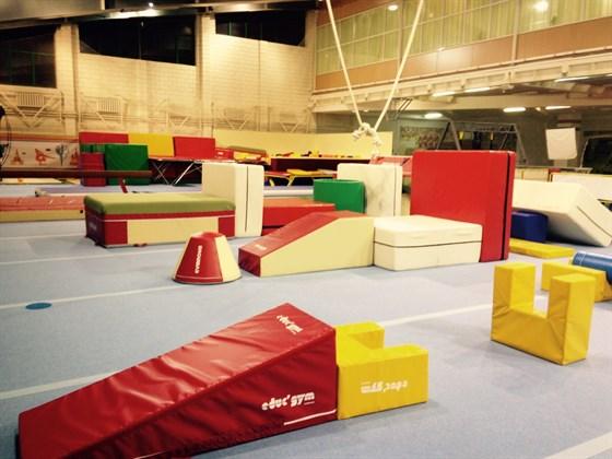 Фото европейский гимнастический центр «Локомотив»