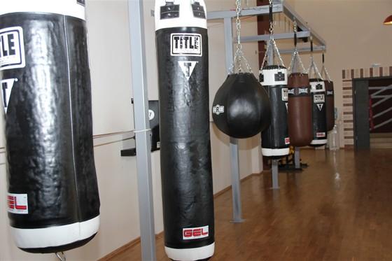 Фото академия бокса